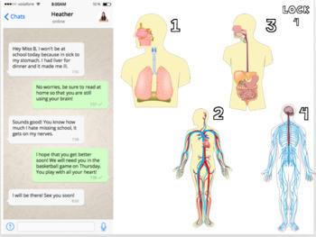 Body Systems Escape Activity