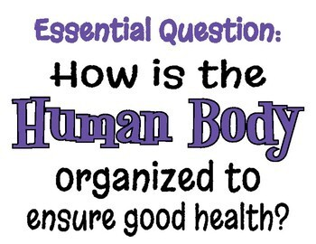 Body Systems Essential Question Posters - Editable in Google Slides!