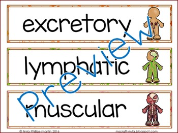Body Systems Illustrated Word Wall