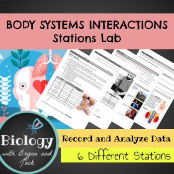 Body System Interactions: Stations Lab