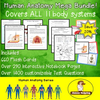 Body Systems Mega Bundle!