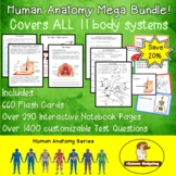 Human Anatomy Mega Bundle!