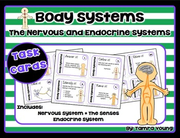 Body Systems: Nervous and Endocrine Systems {Task Cards}