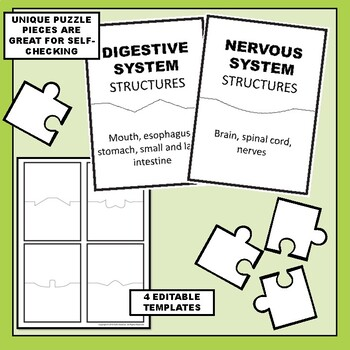 Body Systems Overview Science Vocabulary Puzzles