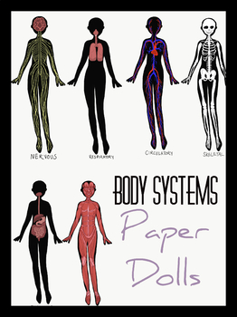 Body Systems: Paper Doll