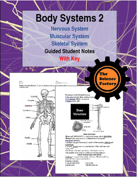 Body Systems Part 2 Word Document