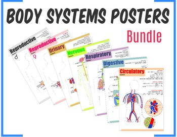Body Systems Posters Bundle