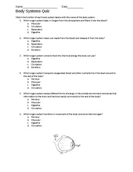 Body Systems Quiz