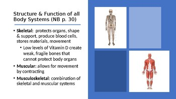 Body Systems Review PowerPoint