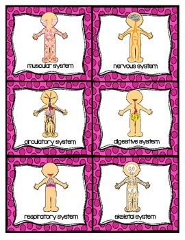 Body Systems Science Literacy Centers