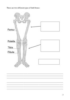 Human Body Systems - Student Workbooklet - Anatomy