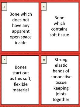 Body Systems Study Buddy Cards
