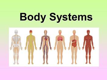 Body Systems Teacher and Student Fill-in Notes