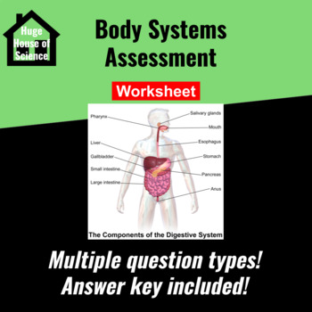 Body Systems Test