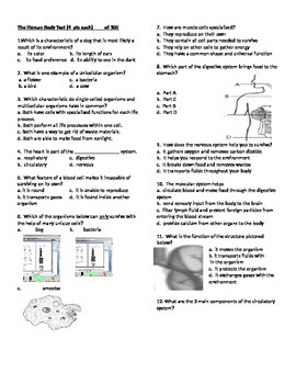 Body Systems Test - 5th
