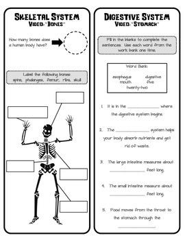 Body Systems Video Quiz - Kidshealth.org