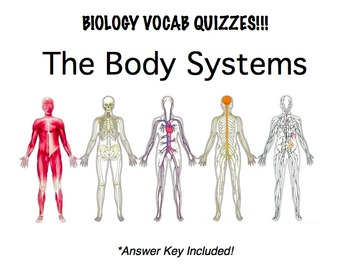 Body Systems Vocab Quizzes