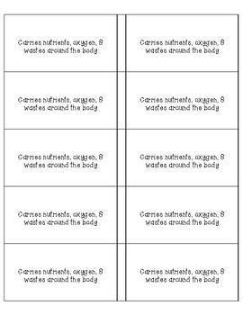 Body Systems Vocab cards