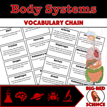 """Body Systems Warm-Up Game: """"I have, who has?"""" Vocabulary Chain"""