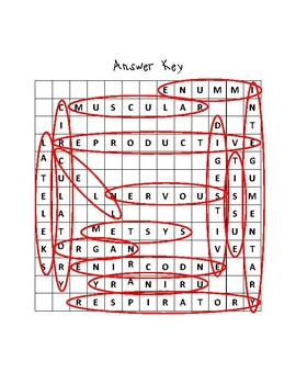Body Systems Word Search