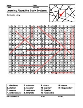 Body Systems Word Search Printable