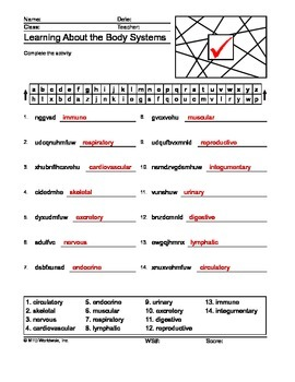 Body Systems Word Search and Word Puzzles Bundle
