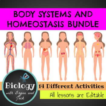 Body Systems and Homeostasis Bundle