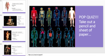 Body Systems and Homeostasis PPT Unit Notes