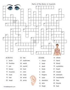Body in Spanish -- 14 Puzzle Packet