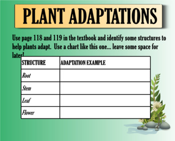 Body of Seed Plants and Plant Adaptations