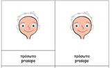 Body parts Greek Montessori Nomenclature Cards