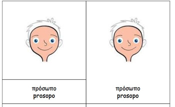 Body parts Greek Montessori Nomenclature Cards