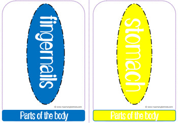 Body parts Vocabulary Flashcards, posters, minicards for ESL