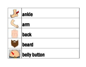 Body in English word wall