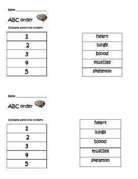 Body-themed ABC order