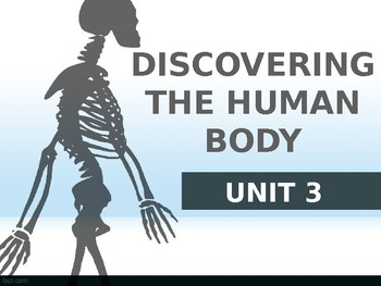 Body unit for EFL students