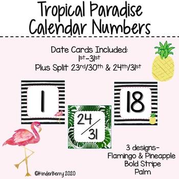 Bold Paradise Calendar Numbers