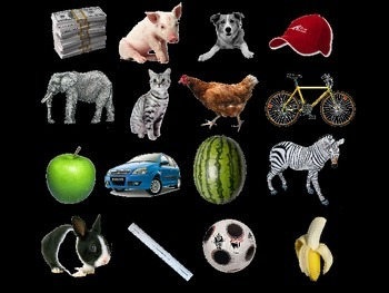 Bomb game (animals)