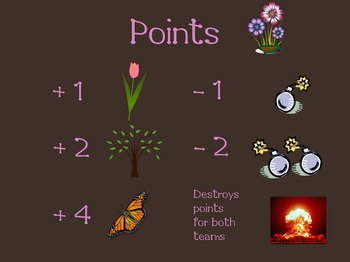 Bomba Review Game (Spring)