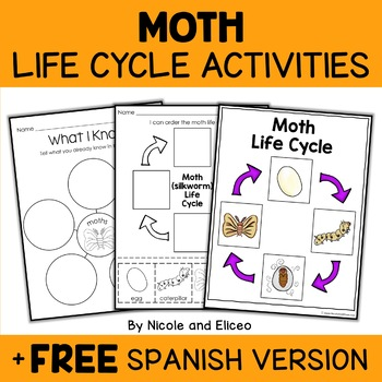 Vocabulary Activity - Silkworm Moth Life Cycle