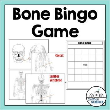 Skeletal System: Bone Bingo Game