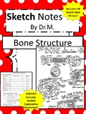 Bone Structure Sketch Doodle Notes, Student Notes, incl FIB Version & Wksheet!