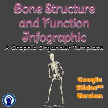 Bone Structure and Function Graphic Organizer Template Google Slides™ Version