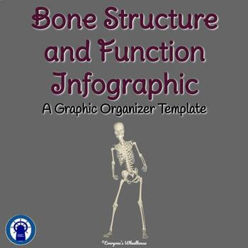 Bone Structure and Function Infographic Template Graphic Organizer