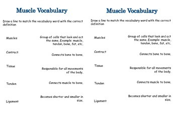 Bone Vocabulary and Joint Notebooking