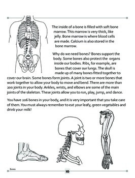 Bones Are Not Just For The Dog!