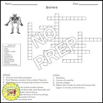 Bones Crossword Puzzle