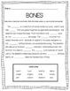 Bones Bundle {Small Activity}