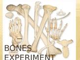 Bones Experiment