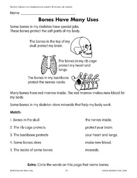 Bones/Los huesos